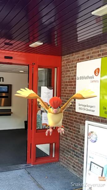 Pokemon in de bieb - Te bouwen zijn bibliotheek ...